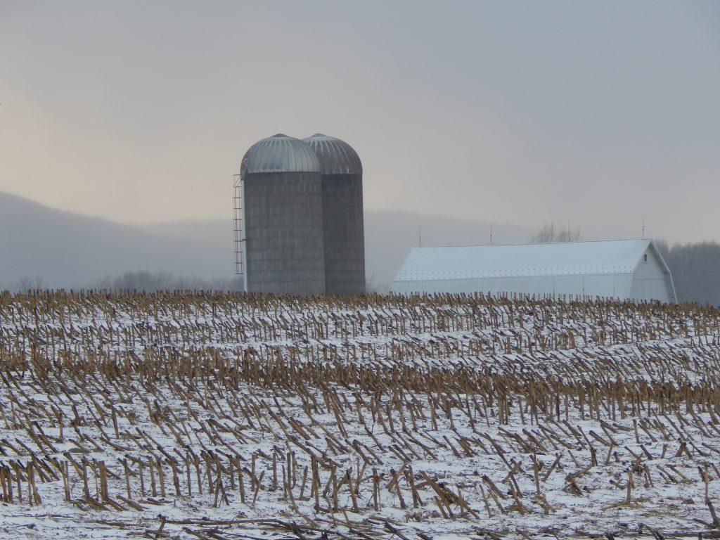 A Farm Off Route 21
