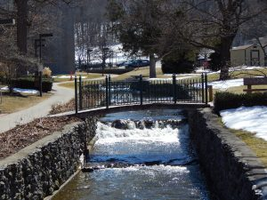 Spring Run-off in the Finger Lakes