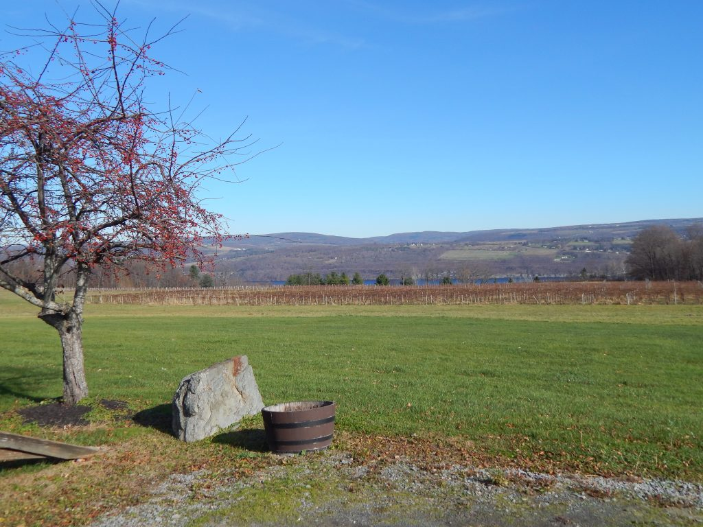 Seneca Lake From Castle Grisch Winery