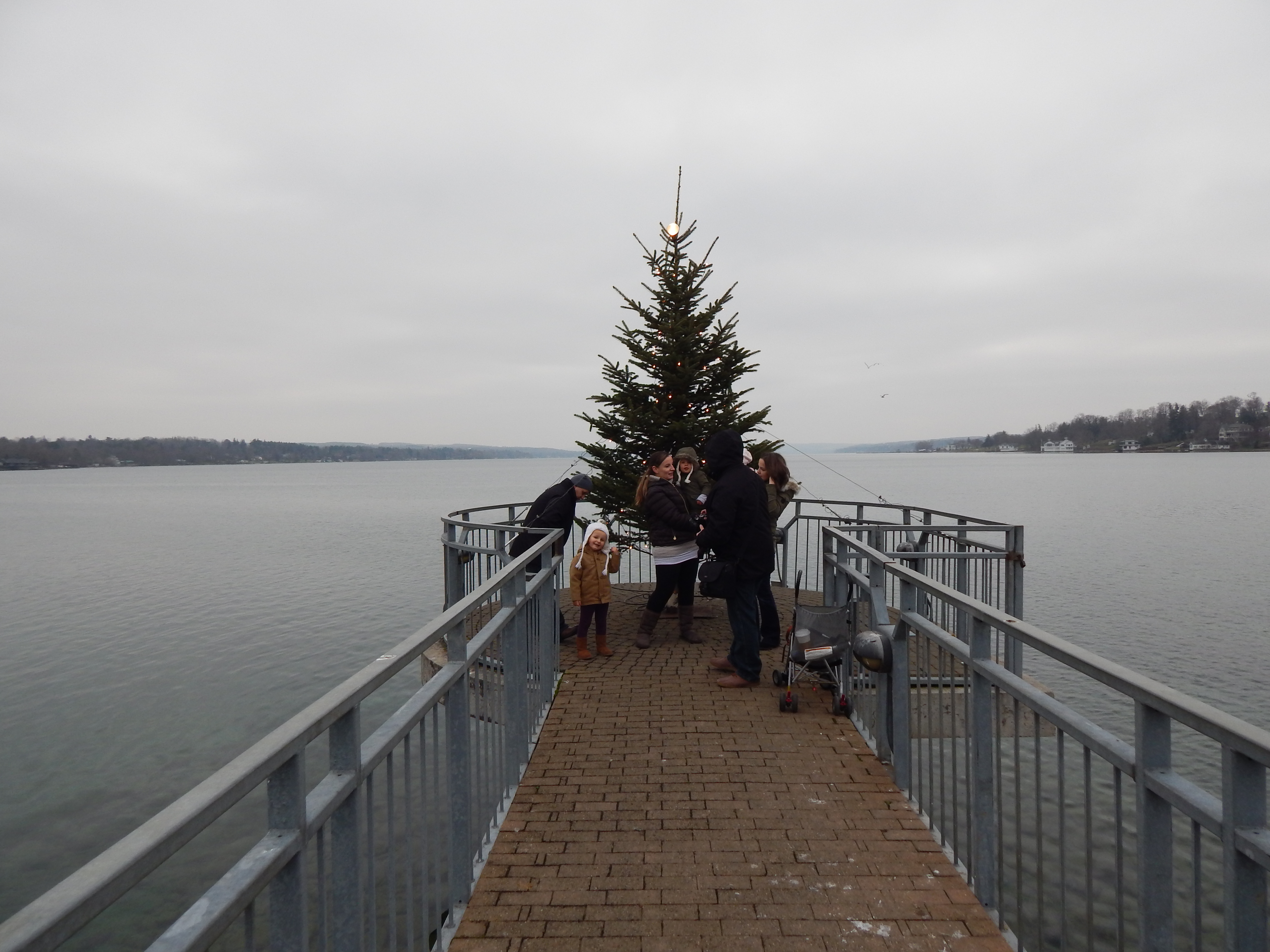 the christmas tree at the end of the pier - Skaneateles Christmas