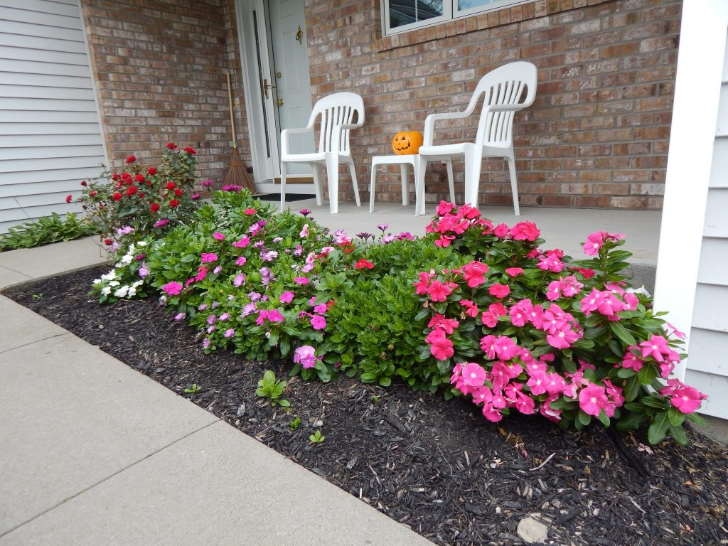 Vincas and Roses At Our House