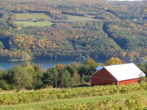 Keuka Lake at Bully Hill Winery